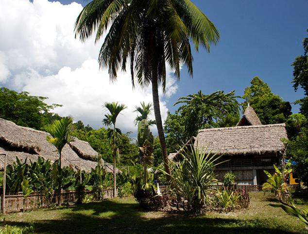 Wild-Orchid-Resort